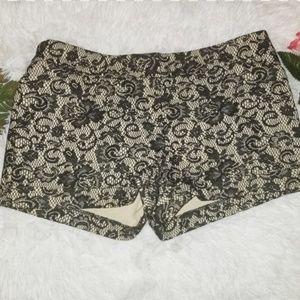 NWT Bebe shorts